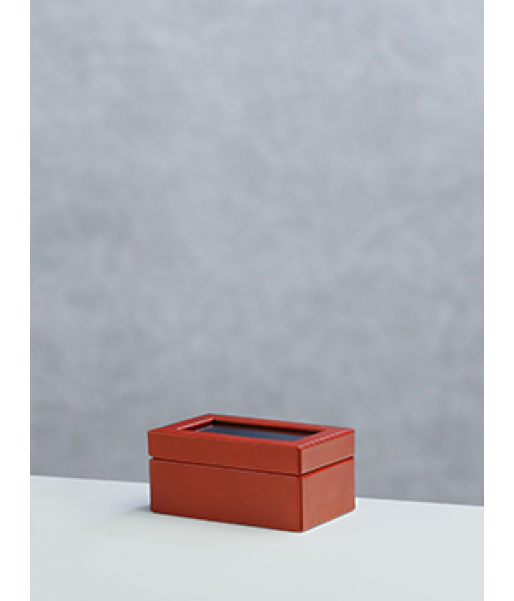 Small Watch Case